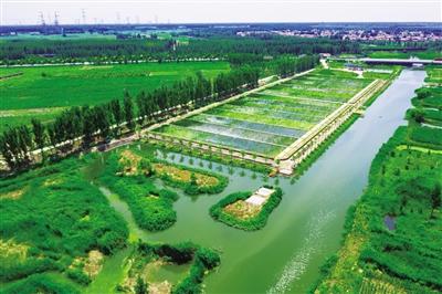 开展河流生态廊道建设 推动水环境治理技术创新 ——京津冀区域水污染控制与治理综合调控取得示范性成果